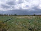 référence n° 150205939 : Marssac-sur-Tarn - TERRAINS A BATIR