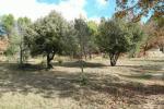référence n° 157593482 : Tourtour - TOURTOUR, superbe terrain arboré de 3000 m2 avec PC ( 1...