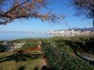 référence n° 158661115 : Saint-Florent - St Florent - Villa pied dans l'eau