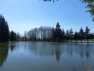 référence n° 159276606 : Beulotte-Saint-Laurent - Dpt Haute-Saône (70), à vendre BEULOTTE SAINT LAURENT propriété de 2.5 hectares , deux étangs +...