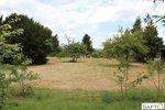 référence n° 166062455 : Bellerive-sur-Allier - Beau terrain plat et dominant de 2000m2