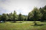 référence n° 182557374 : Rougemont-le-Château - Secteur Rougemont-le-Château (90), magnifique terrain constructible de 2090 m² e