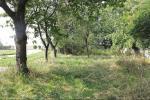 référence n° 77604899 : Reims - vente terrain marne reims